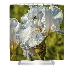 White Iris June 2016.  Shower Curtain