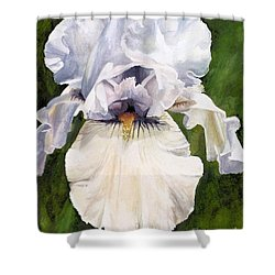Shower Curtain featuring the painting White Iris by Laurie Rohner