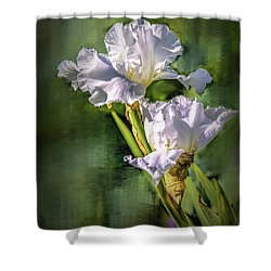 White Iris On Abstract Background #g4 Shower Curtain