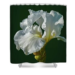 Shower Curtain featuring the photograph White Iris On Dark Green #g0 by Leif Sohlman
