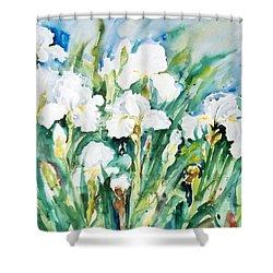 White Irises Shower Curtain by Alexandra Maria Ethlyn Cheshire