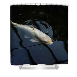 White Koi Shower Curtain