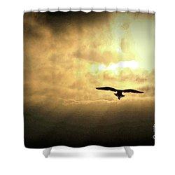 White Light Sunrise Shower Curtain