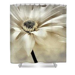 Shower Curtain featuring the photograph White Lights by Darlene Kwiatkowski