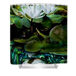 White Lilies, White Reflection Shower Curtain