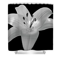 White Lily 2 Shower Curtain