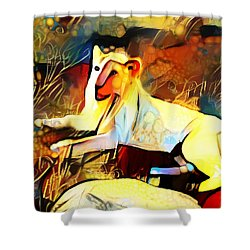 Shower Curtain featuring the photograph White Lioness by Pennie  McCracken