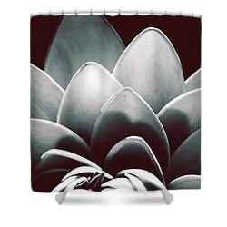 White Lotus At Dawn Shower Curtain by Sumit Mehndiratta