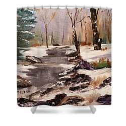 White Mountains Creek Shower Curtain by Larry Hamilton