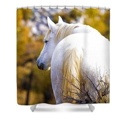 White Mustang Mare Shower Curtain