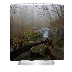 White Oak Canyon Safari Shower Curtain