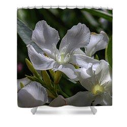 White Oleander Shower Curtain