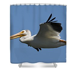 White On Blue Shower Curtain by Mike Dawson