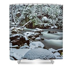 White On Green Shower Curtain by Mark Lucey
