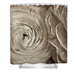Shower Curtain featuring the painting White On White Rose by Joan Reese
