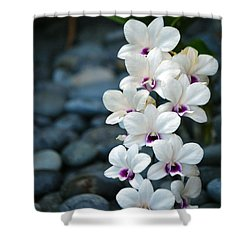 Shower Curtain featuring the photograph White Orchids by Debbie Karnes