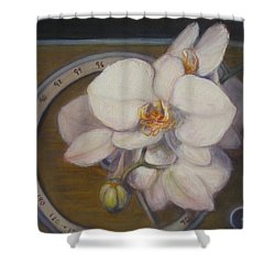White Orchids Shower Curtain by Donelli  DiMaria