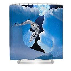 White Owl Shower Curtain by Jack Zulli