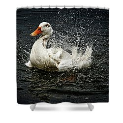 White Pekin Duck Shower Curtain