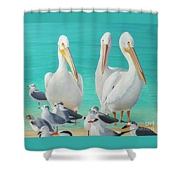 Shower Curtain featuring the painting White Pelicans by Jimmie Bartlett