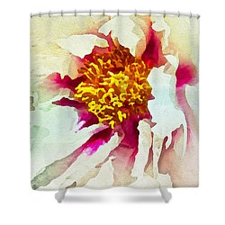 Shower Curtain featuring the painting White Peony by Joan Reese