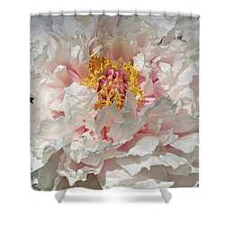 Shower Curtain featuring the photograph White Peony by Sandy Keeton