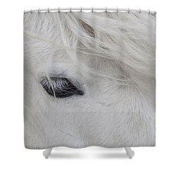 White Pony Shower Curtain