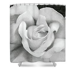 Shower Curtain featuring the photograph White Rose Macro Black And White by Jennie Marie Schell