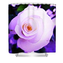 White Rose Shower Curtain by Mary Ellen Frazee