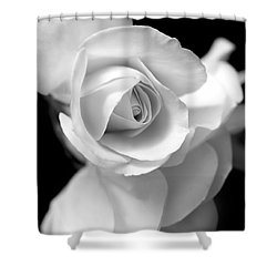 White Rose Petals Black And White Shower Curtain