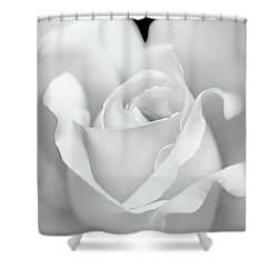 Shower Curtain featuring the photograph White Rose Purity by Jennie Marie Schell