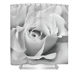 Shower Curtain featuring the photograph White Rose Ruffles Monochrome by Jennie Marie Schell