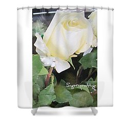White Rose - Sympathy Card Shower Curtain
