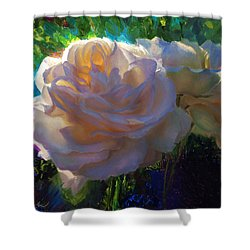 White Roses In The Garden - Backlit Flowers - Summer Rose Shower Curtain