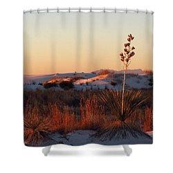 White Sands Dawn #14 Shower Curtain