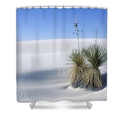 White Sands Dune And Yuccas Shower Curtain by Sandra Bronstein