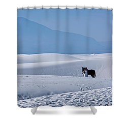 White Sands Horse And Rider #5b Shower Curtain