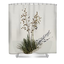 White Sands Yucca Shower Curtain