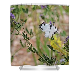 White-skipper On Lupine Shower Curtain
