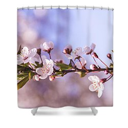 White Spring Flowers Shower Curtain