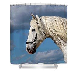 White Stallion Shower Curtain