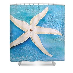 Shower Curtain featuring the painting White Starfish by Patricia Piffath