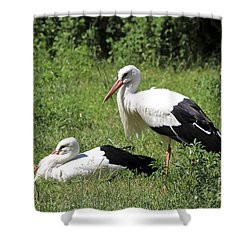 White Storks Shower Curtain by Teresa Zieba