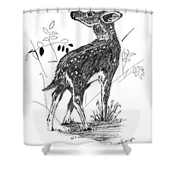 White-tail Fawn -pen And Ink Shower Curtain