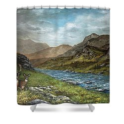 White Tail Meadow Shower Curtain by David Jansen