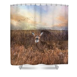 Shower Curtain featuring the photograph White Tail by Robin-Lee Vieira