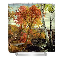 White-tailed Deer In The Poconos Shower Curtain