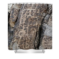 White Tank Petroglyphs #1 Shower Curtain by Anne Rodkin