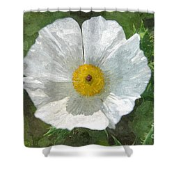 White Thistle Shower Curtain