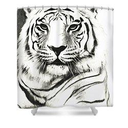 White Tiger Portrait Shower Curtain